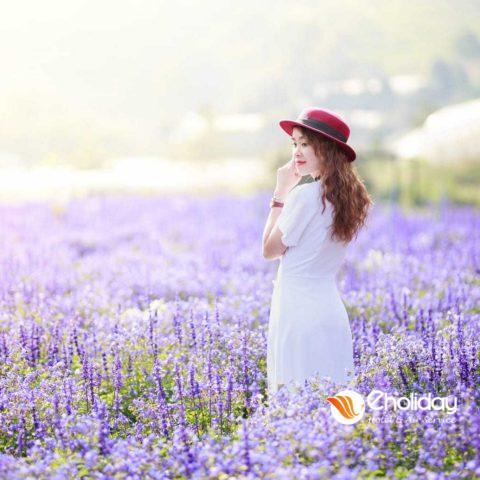 Song Ao Tung Chao Voi Canh Dong Hoa Lavender Dep Tua Chau Au 6